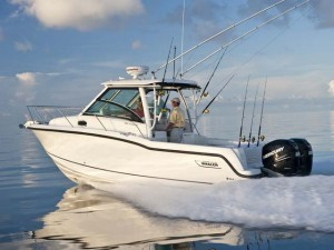 30  boston whaler for sale