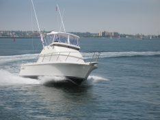 Skipjack Boats forSale