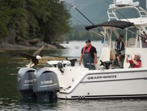 Used Grady White Boats For Sale