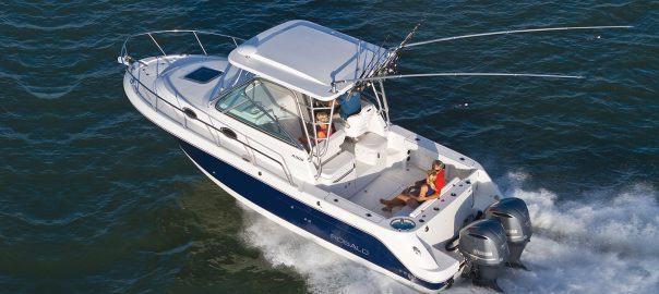 Robalo 305 For Sale