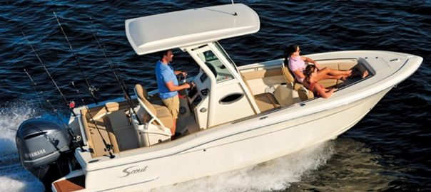 Scout Sportfish For Sale