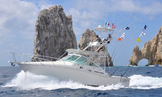 31' Cabo Yachts Express Boats For Sale