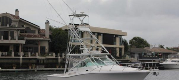 31' Cabo Express 2003 For Sale
