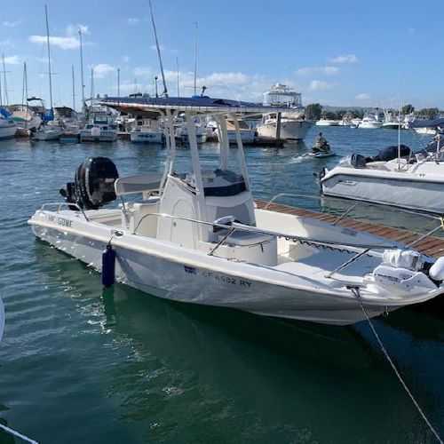 21 Boston Whaler 210 Dauntless 2016
